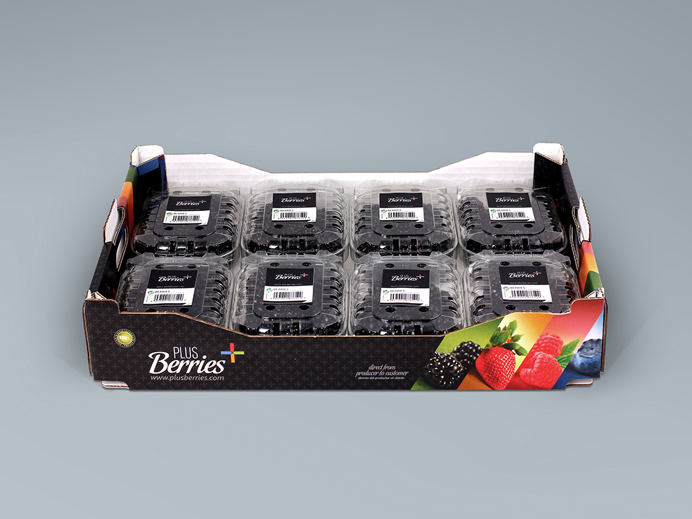 Diseño de caja y etiquetas para tarrinas de frutas Plus Berries