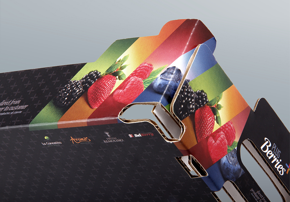 Diseño de caja para tarrinas de frutas Plus Berries